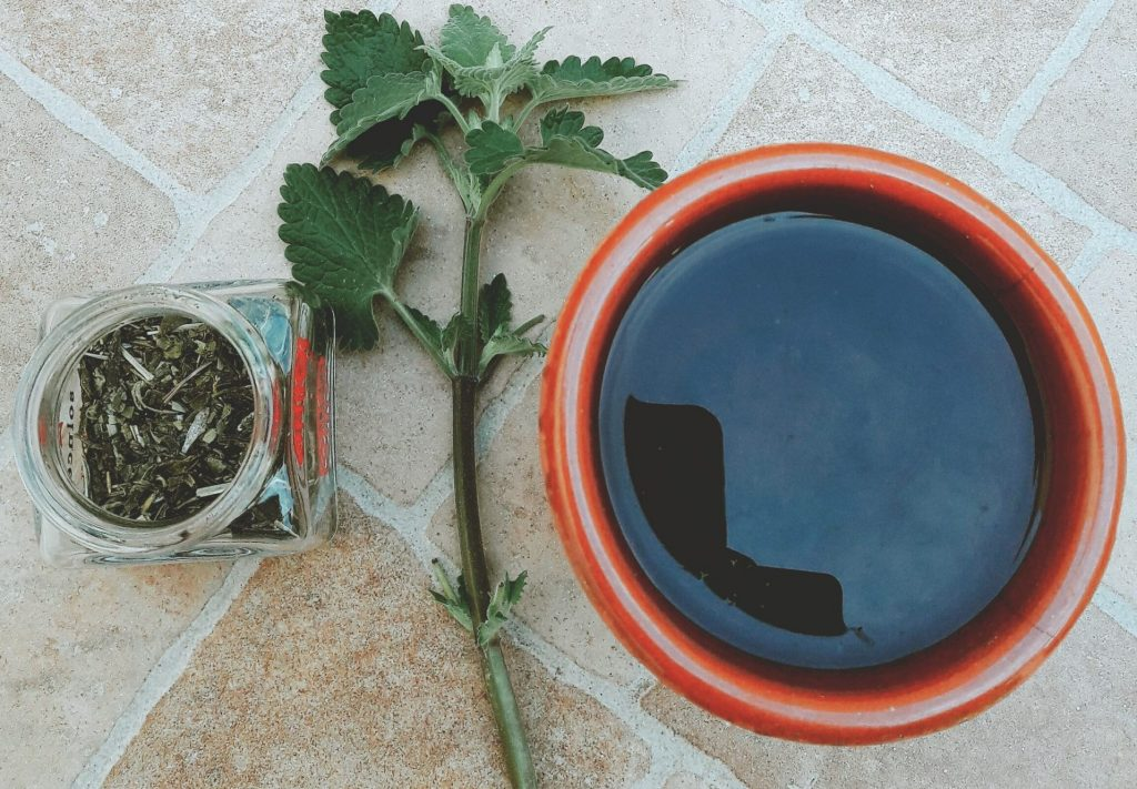 stinging nettle tea, natural and organic ingredients