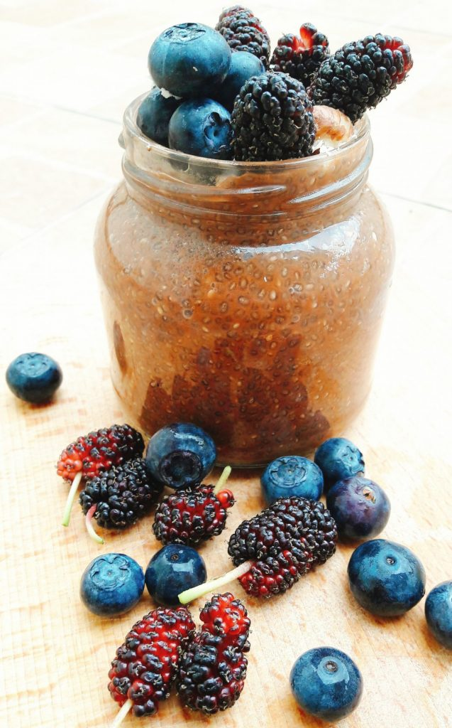 blueberry mulberry chia pudding