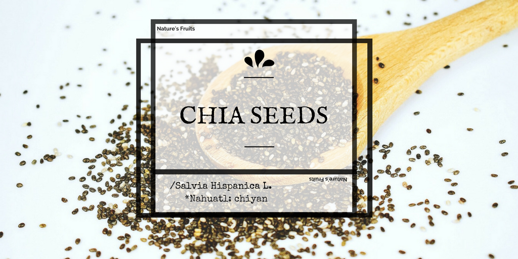 chia seed benefits, uses