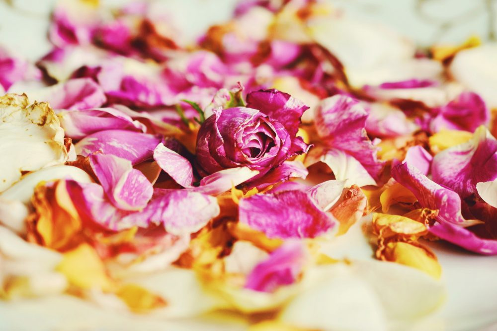 rosewater skin benefits and uses