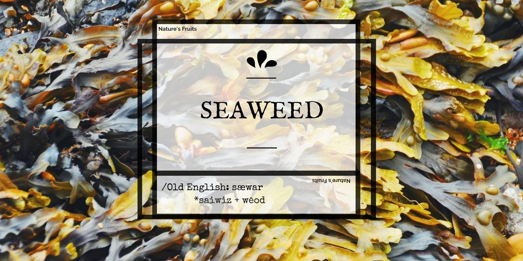 seaweed skin benefits