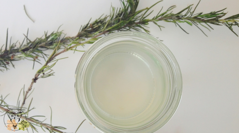 A simple DIY: How to make your own rosemary hydrosol