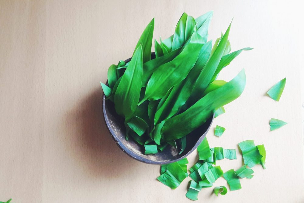 wild garlic health benefits, wild garlic plant