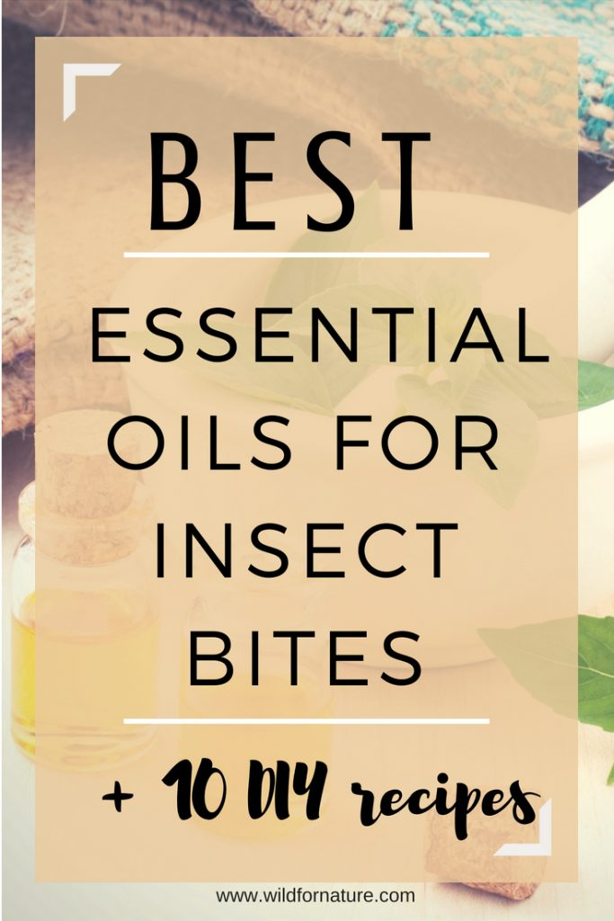 best essential oils for insect bites