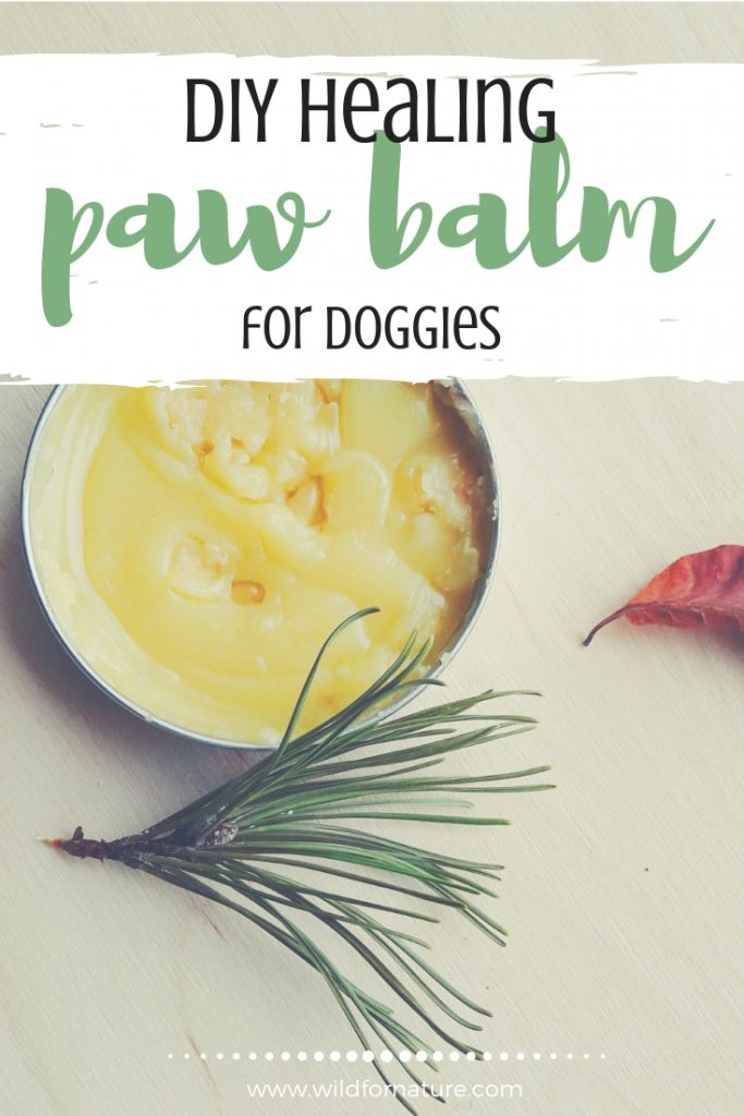 paw balm for dogs recipe